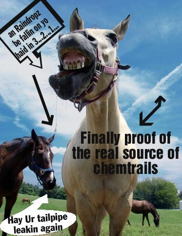 Where chemtrails REALLY come from… lolhorse ranch!