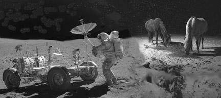 lolhorses on moon